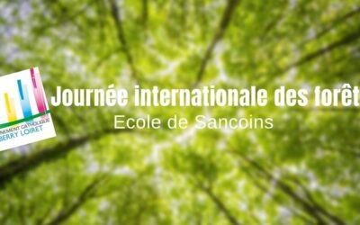 Ecole de Sancoins – Journée Internationale des Forêts !